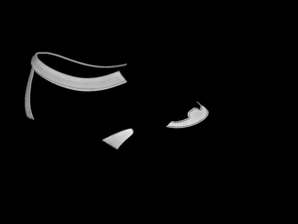 L1602 Black Aniline